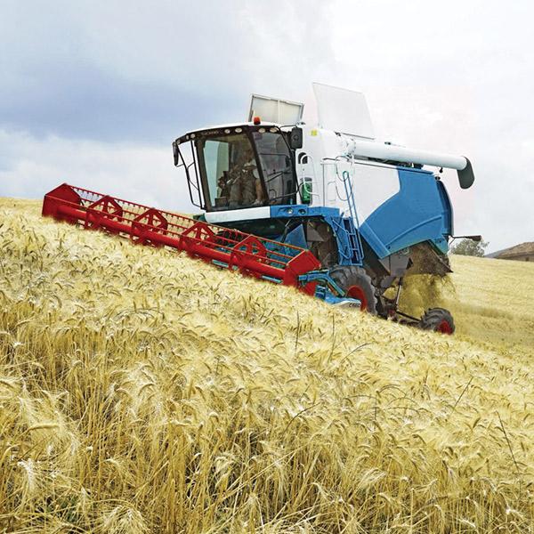 Grain harvest monitor